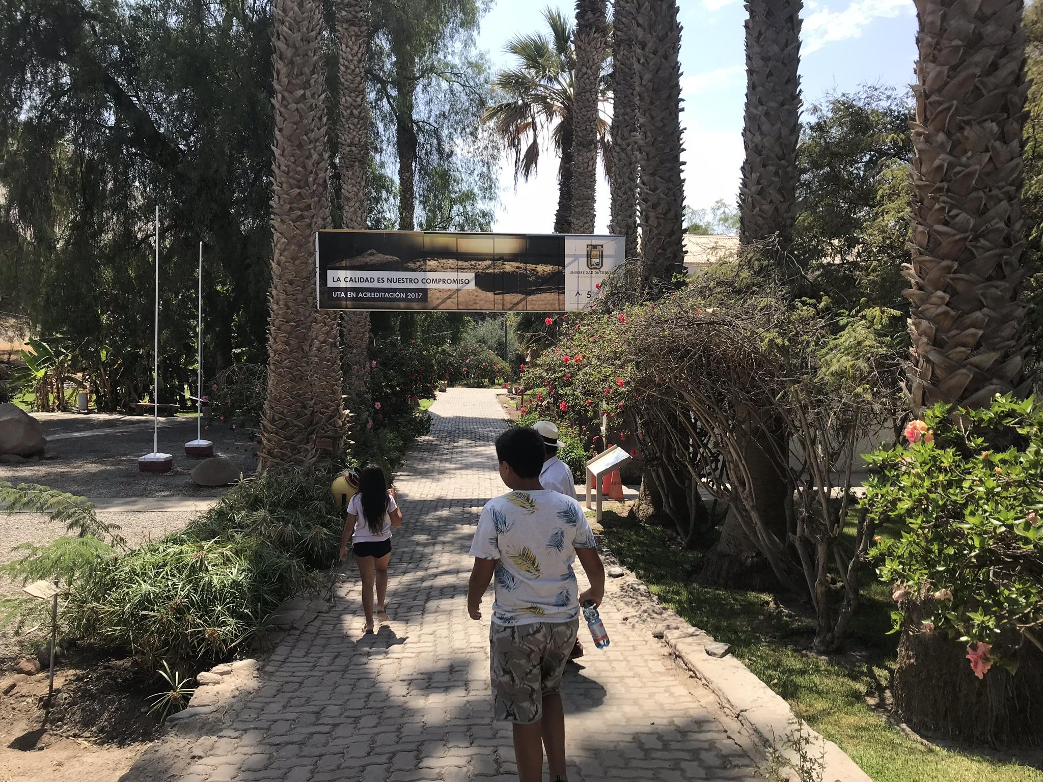 Museo de Sitio Valle de Azapa, Arica | Mi Blog de Aventuras | 2019