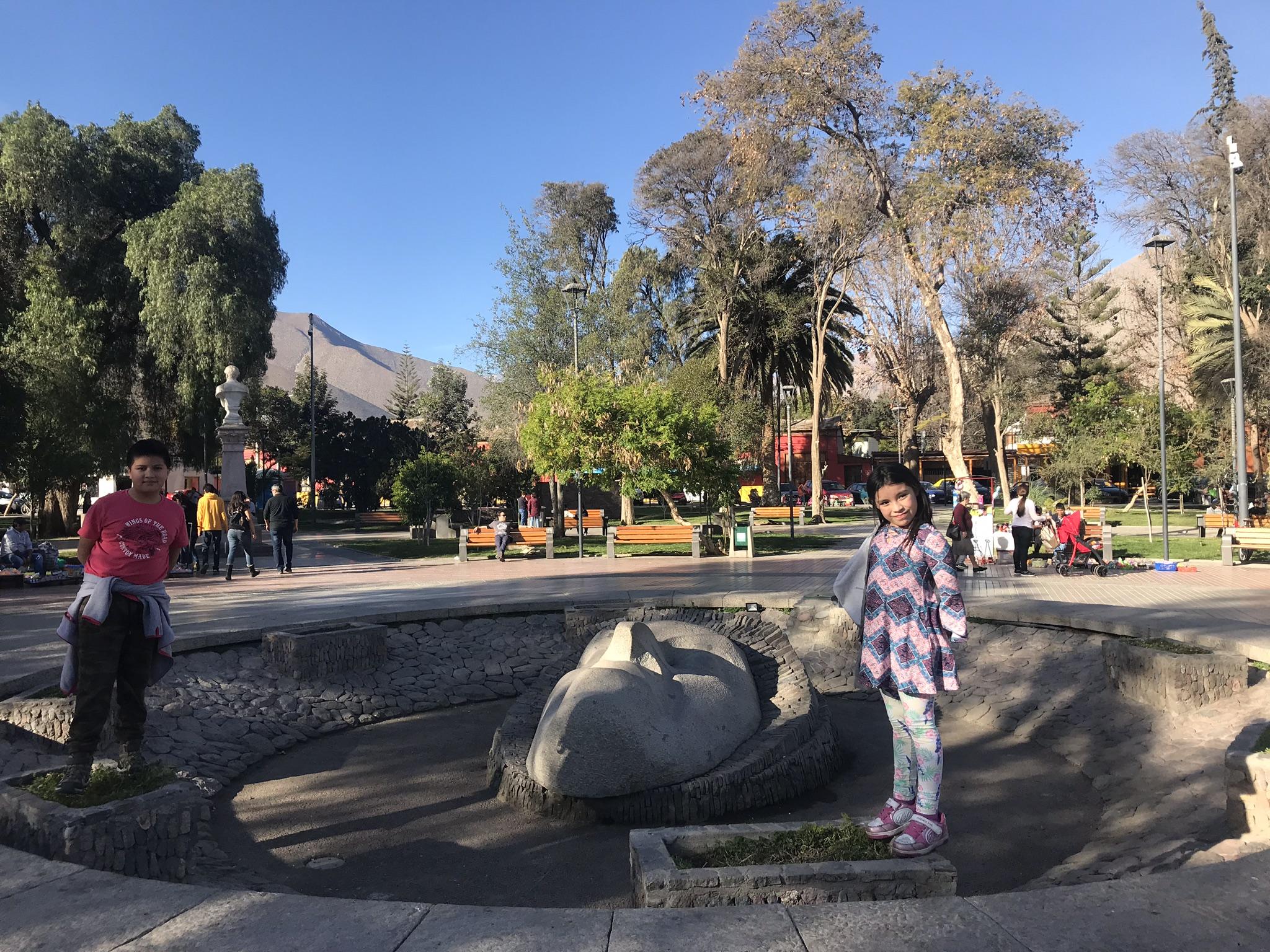 Vicuña. Valle del Elqui | Mi Blog de Aventuras | 2018