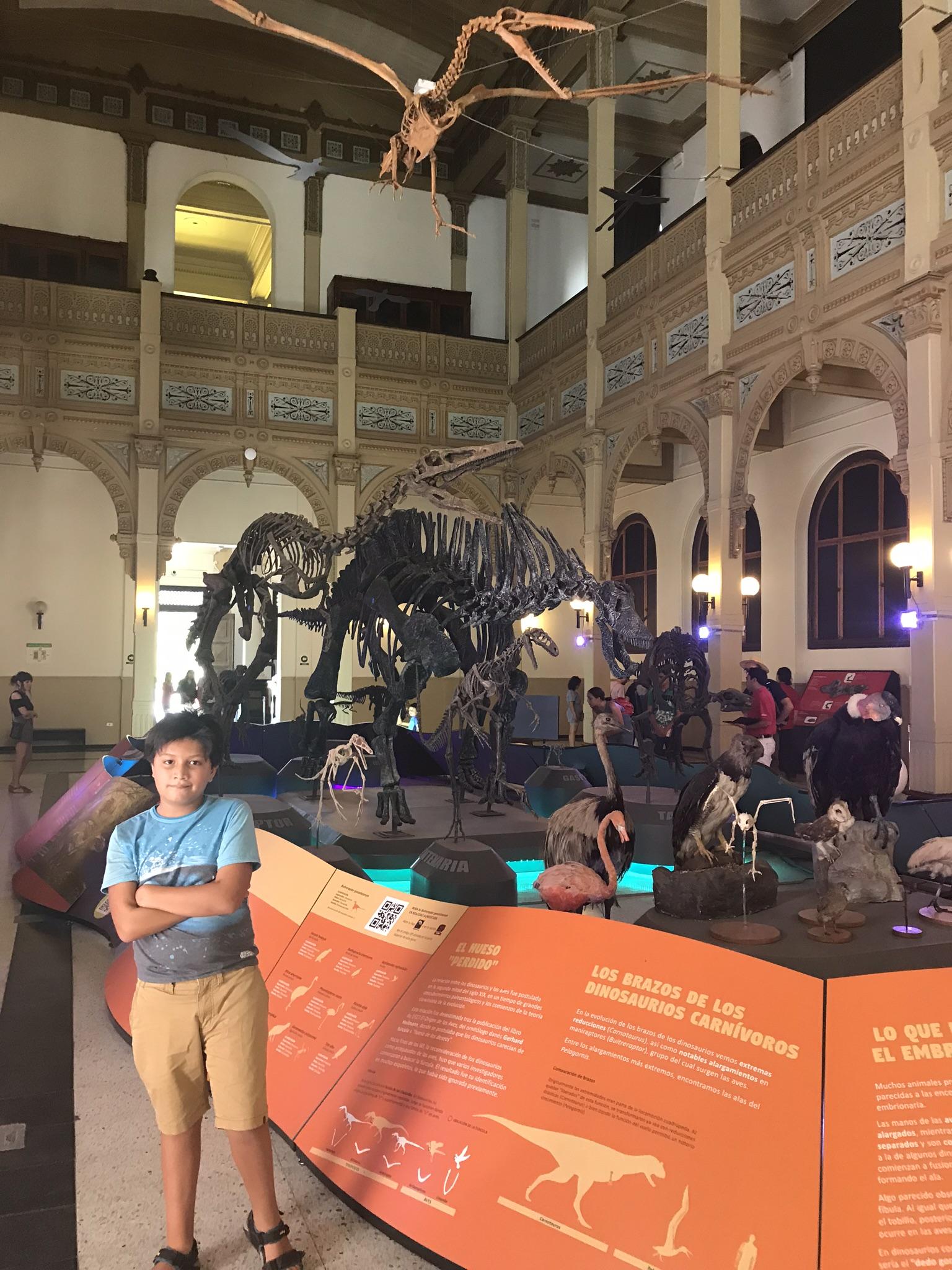 Museo de Historia Natural | Mi blog de aventuras | 2017