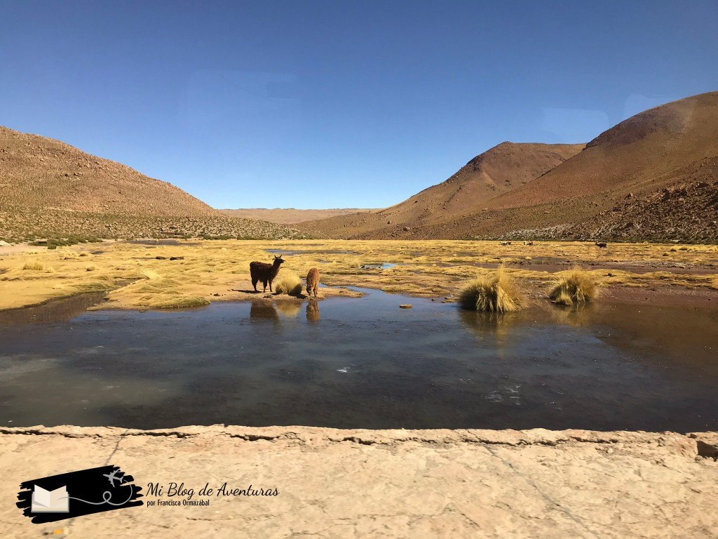Pueblo de Machuca Blog de Viajes Chile Viajar con niños