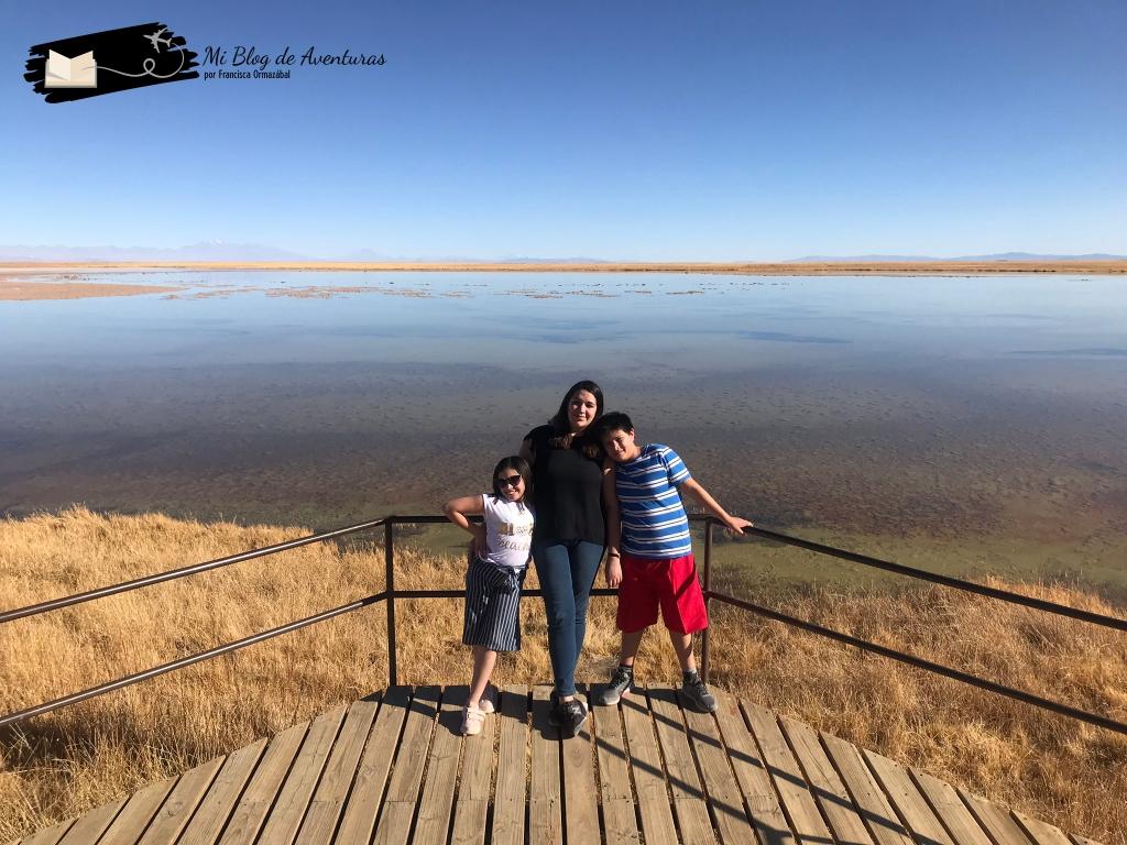 Laguna Cejar, San Pedro de Atacama | Mi Blog de Aventuras | 2019